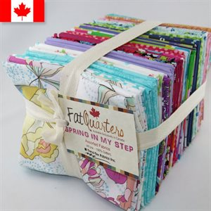 SPRING IN MY STEP ASSORTMENT CANADIAN FAT 1 / 4'S - 40 PCS.