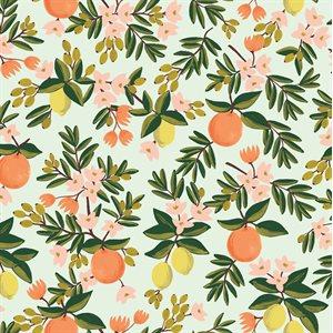 Primavera by Rifle Paper Co.